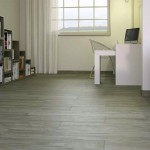 "Parisine Grey Rectificado is a 8"" x 45"" rectified porcelain tile from Spain."